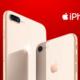 iPhone 8 al por mayor