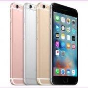 iPhone 12 Plus distribuidor