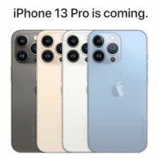 iPhone 13 pro al por mayor distribuidor en eeuu